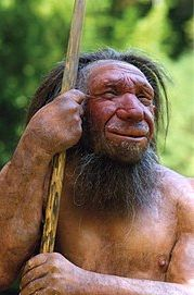 Newer conception of an elderly Neanderrman from the museum in Neanderthal.jpg